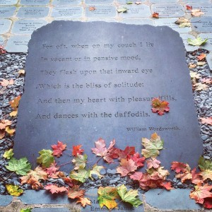 Sharing a little autumnal scene, capturing the season in a moment #culture #poetry #travel #autumn #moments