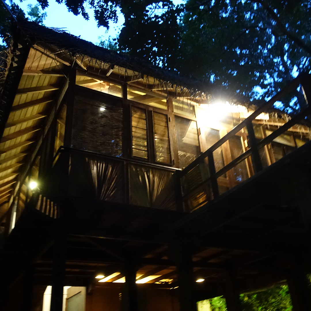 For the last few nights this incredible place has been my home. Living in a #treehouse in the #srilanka #jungle has been truly special experience. Can't wait to share my time there with you all soon #wanderlust #travelblogger #humbled